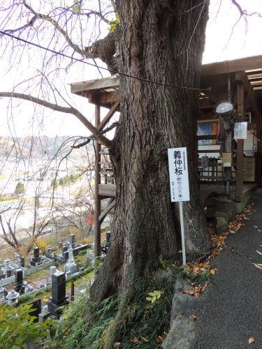 161123yoshinaka78.jpg