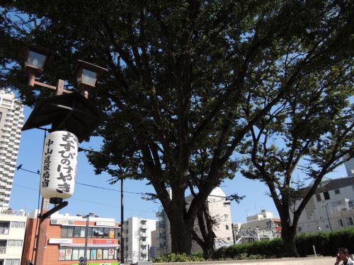 161229itabashi09.jpg