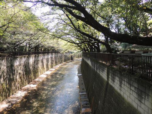 161229itabashi15.jpg