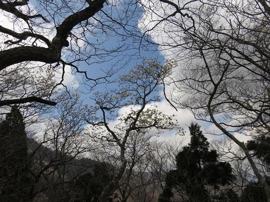 16_4_19_hyouno (25)(1)
