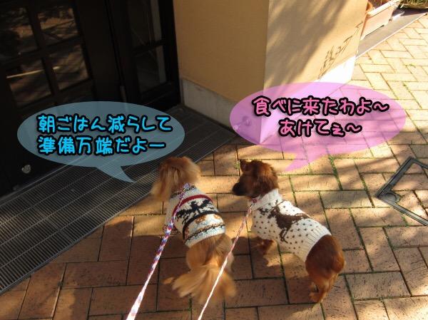 2016_07_23_22_35_12.jpg