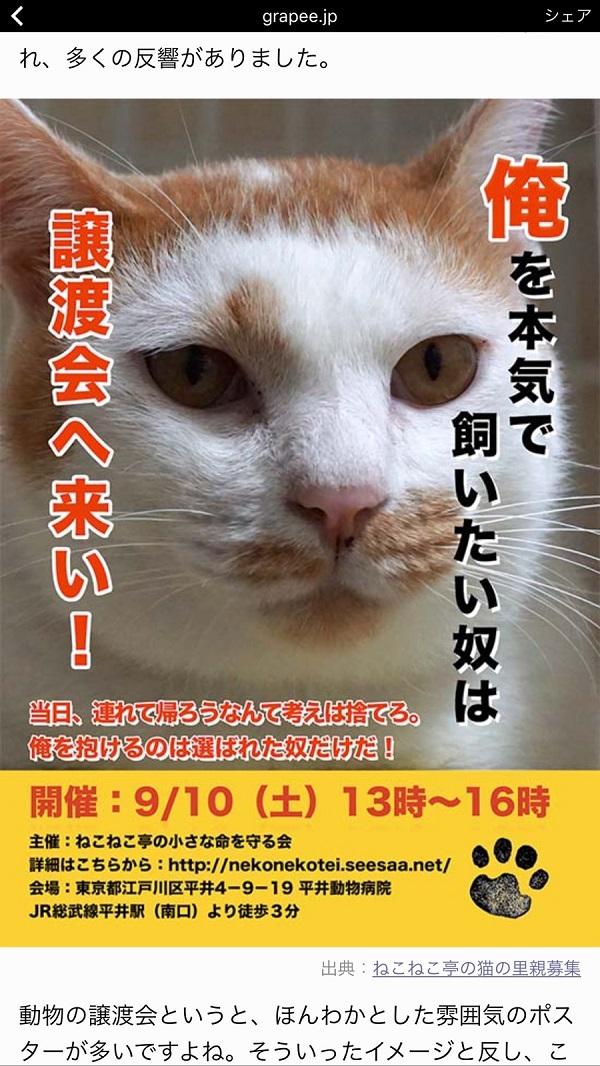 2016_10_03_19_40_37.jpg