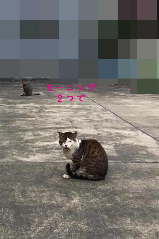 2016_10_11_20_05_53.jpg