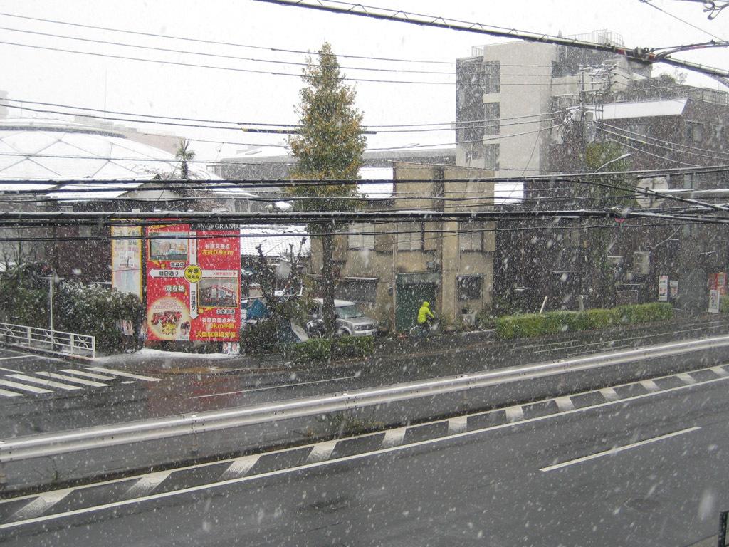 20161124大雪