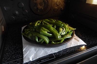 野菜160724 (8)