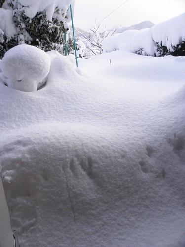 2012年2月18日の積雪 蔵出し写真
