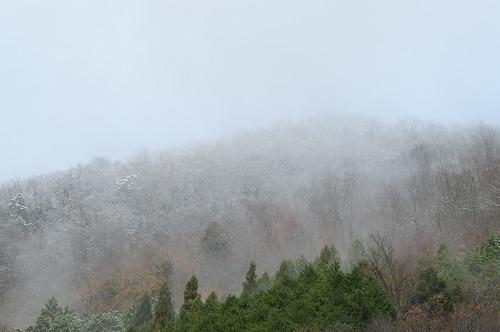 今朝の山161215