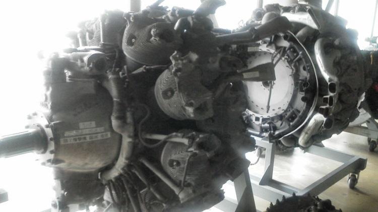 F1000023.jpg