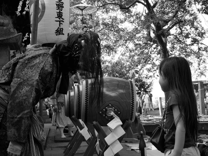 鷹とにらめっこ