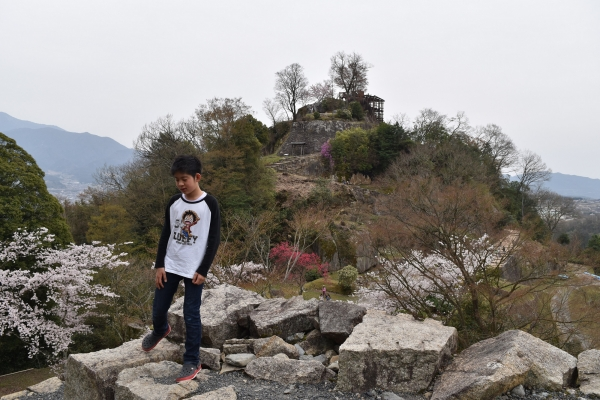 160410-旧苗木城跡