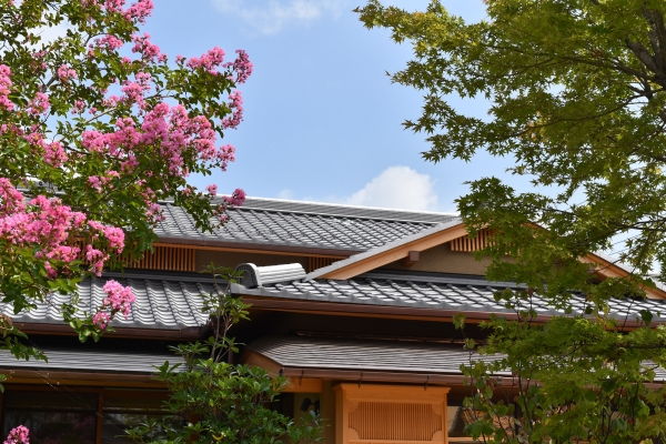 160722-養老の庭 (2)