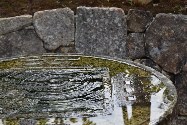 160722-養老の庭 (3)