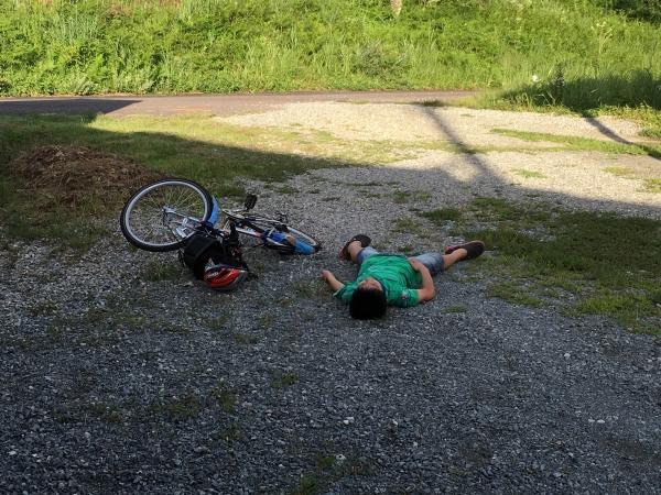 160821-小熊のぶっ倒れ
