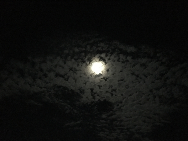 160915-中秋の名月