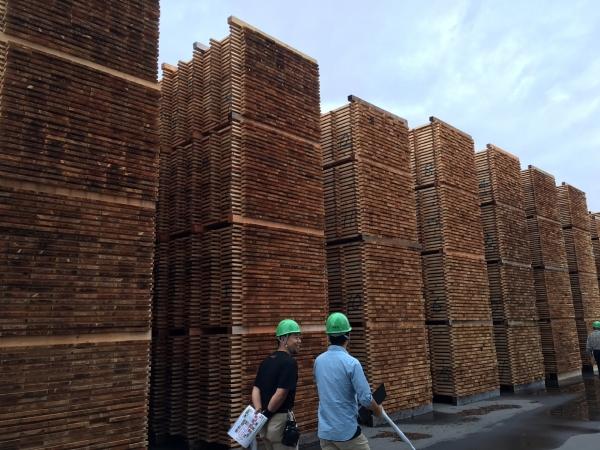 160929ー長良川木材事業協同組合 (3)