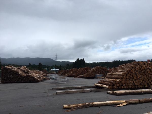 160929ー長良川木材事業協同組合 (4)