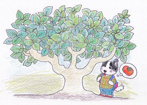 カキの木IMG
