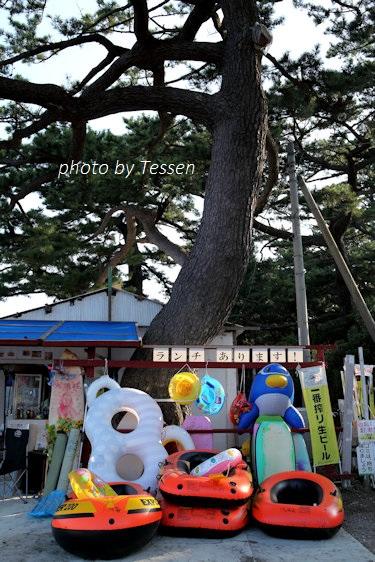 IMG_4284松