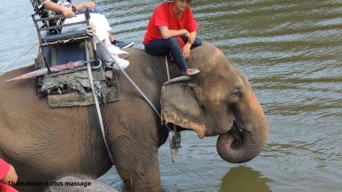 Wangpo Elephant Camp