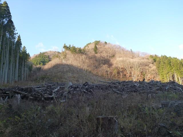s01登山口より