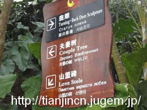 海南島三亜 鹿回頭公園4