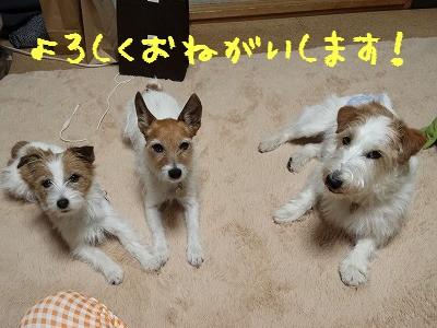 20160502_1800.jpg