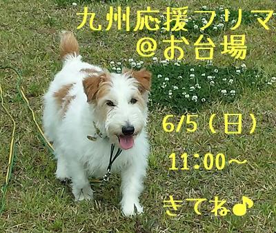 20160603_090746-1.jpg