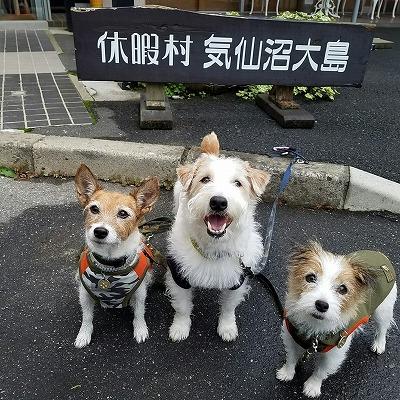 2016_09_22_11.jpg