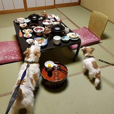 2016_09_22_136.jpg