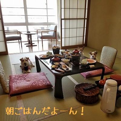 2016_09_22_152.jpg