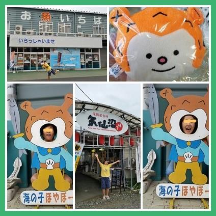 catshoyabo88.jpg
