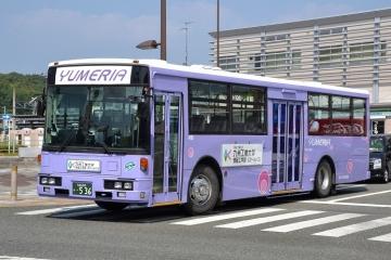 DSC_0645z.jpg