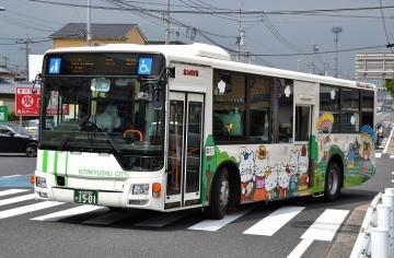 DSC_0672z.jpg
