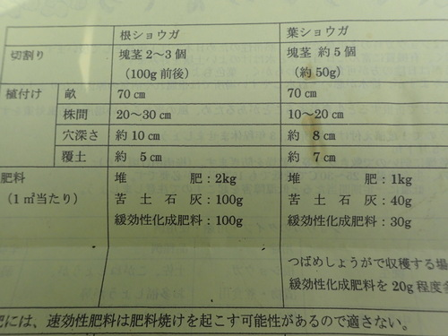 1-P5020873.jpg