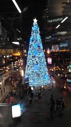P_20161217_182856X mas tree