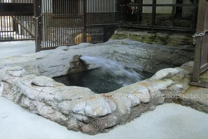 ピースさんの屋内プールに水を溜めている様子です。