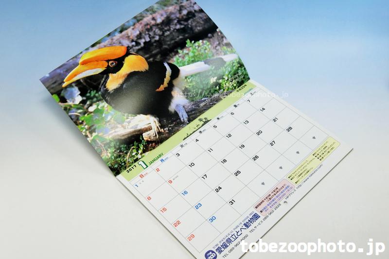 愛媛県立とべ動物園 オリジナルカレンダー 2017です。