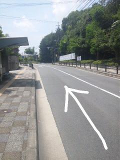 奈良 学園前 整体@グローバルメディカルのブログ-Image024.jpg