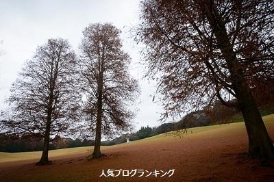 モテ女人生開幕塾☆11月の人気記事ベスト10!2