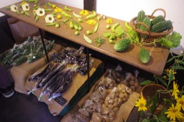 野菜の展示