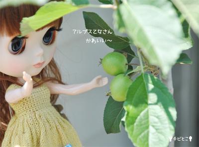 チビとこ果樹園