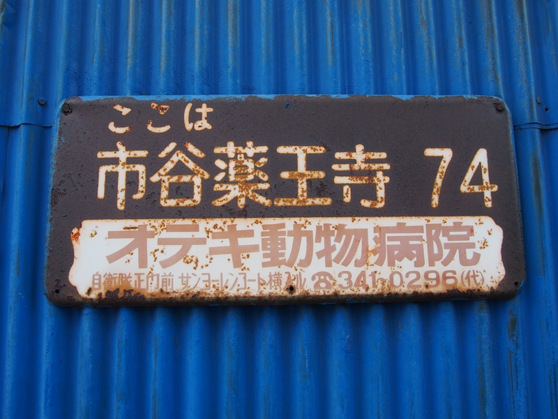 P5280884.jpg
