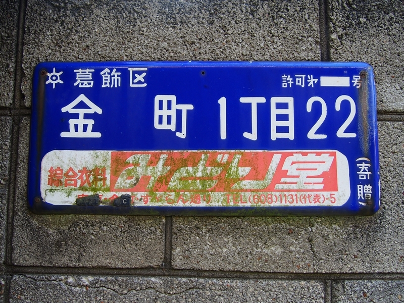 P8111050.jpg