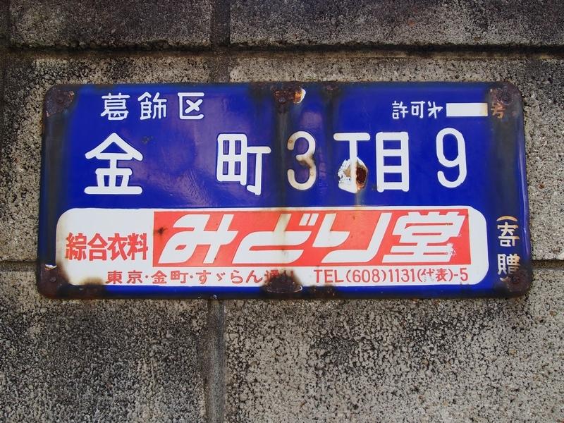 P8111153.jpg