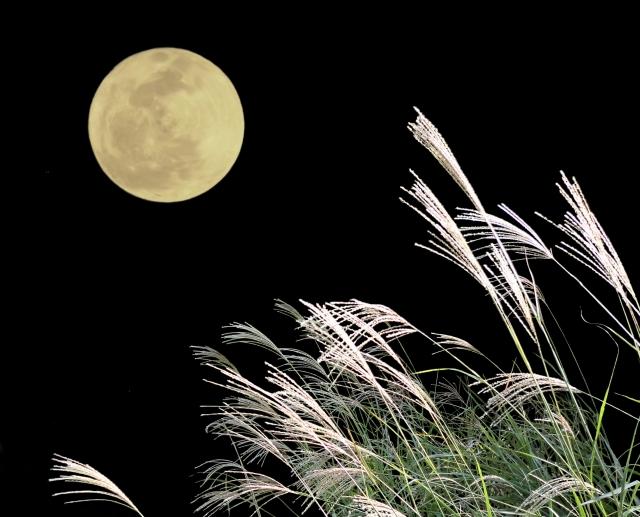 お月見イメージ.jpg