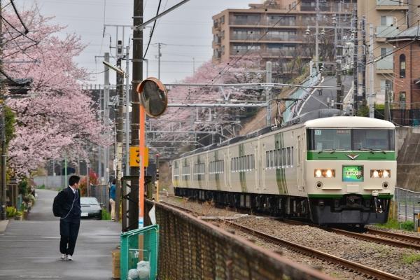2016年4月2日 JR東日本横浜線 大口~菊名 185系オオB3編成