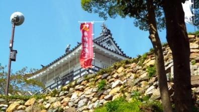 浜松城に来たぞ これから上る時の野面積みの石垣を上る写真