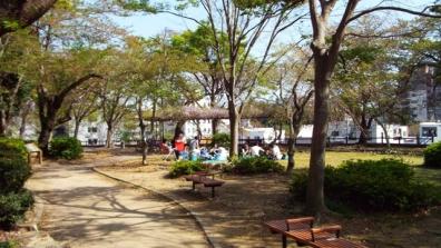 静岡県浜松城へ上る途中に桜散った公園で花見をしていた輩どもにぶちキレそうだった