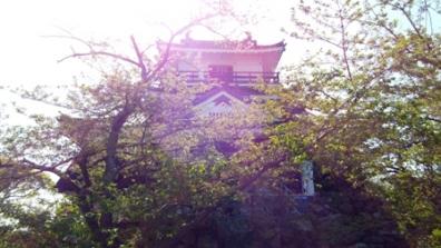 浜松城へ日帰りドライブの昼下がりの浜松城の写真