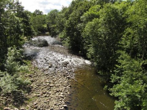 エビシオマップ川